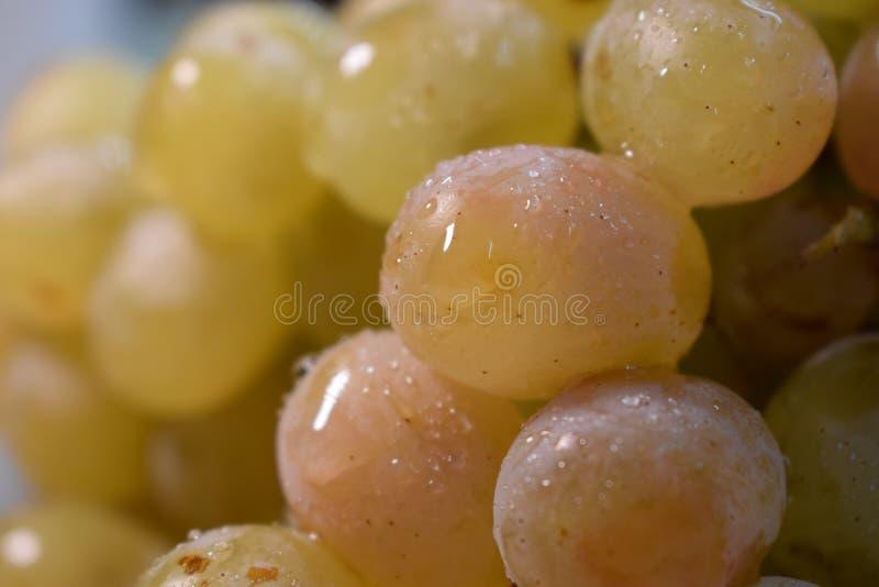 Las uvas fotografía de archivo