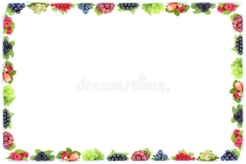 Las uvas de la pasa roja de los arándanos de las fresas de las bayas enmarcan organi imagen de archivo