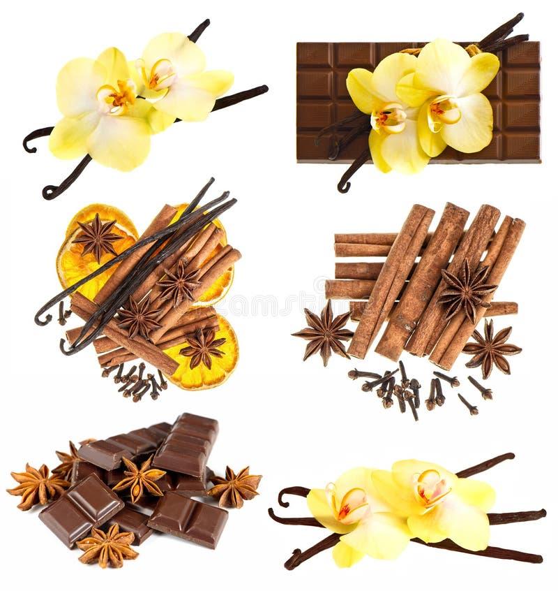 Las vainas de la vainilla con la orquídea florecen, chocolate, palillos de canela fotografía de archivo