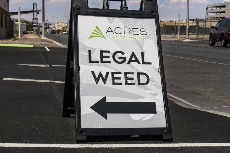 Las Vegas - Circa Juli 2017: Tunnländer apotek för cannabismarijuanalager Som av 2017, är den fritids- krukan laglig i Nevada VI fotografering för bildbyråer