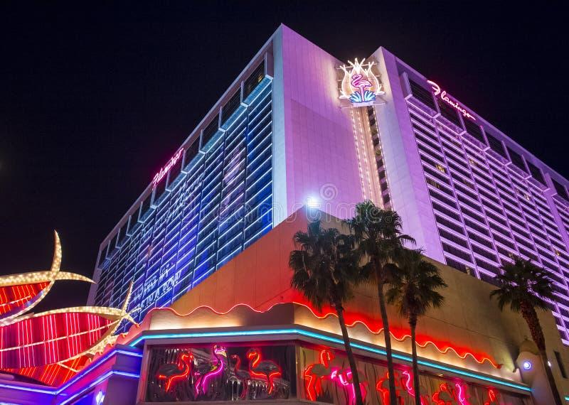 Las Vegas, flamingo fotos de stock royalty free