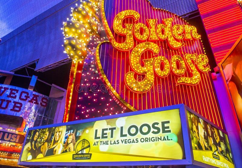 Las Vegas guld- gås fotografering för bildbyråer