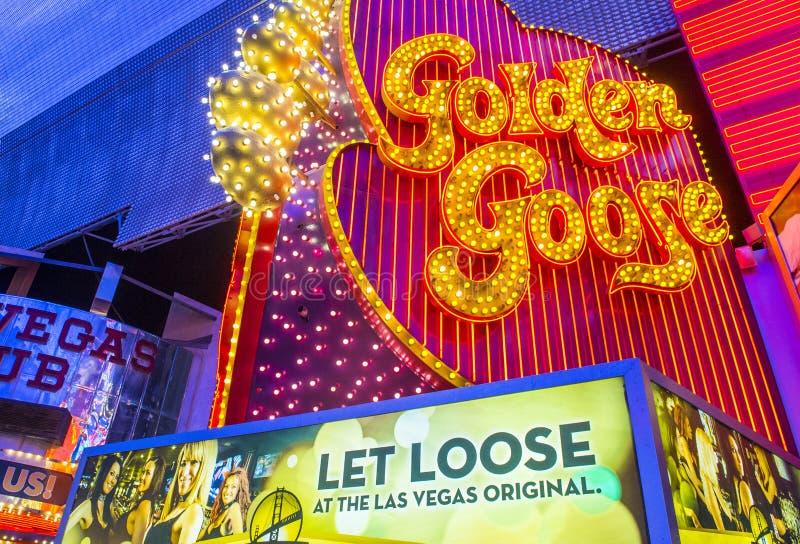 Las Vegas guld- gås royaltyfria bilder