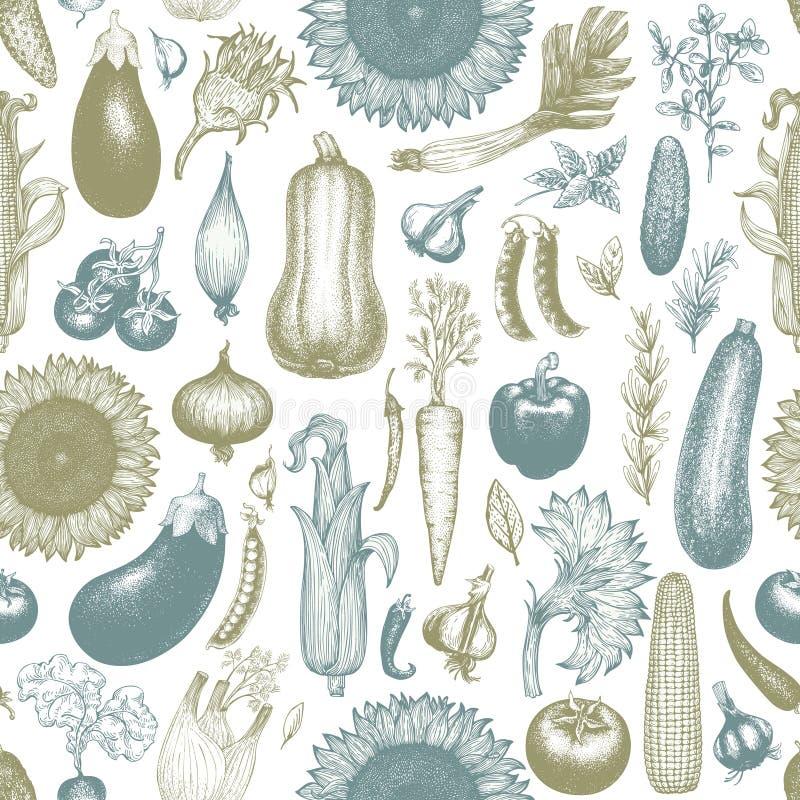Las verduras dan a vector exhausto el modelo inconsútil Fondo grabado retro del estilo Puede ser el uso para el menú, etiqueta, e libre illustration