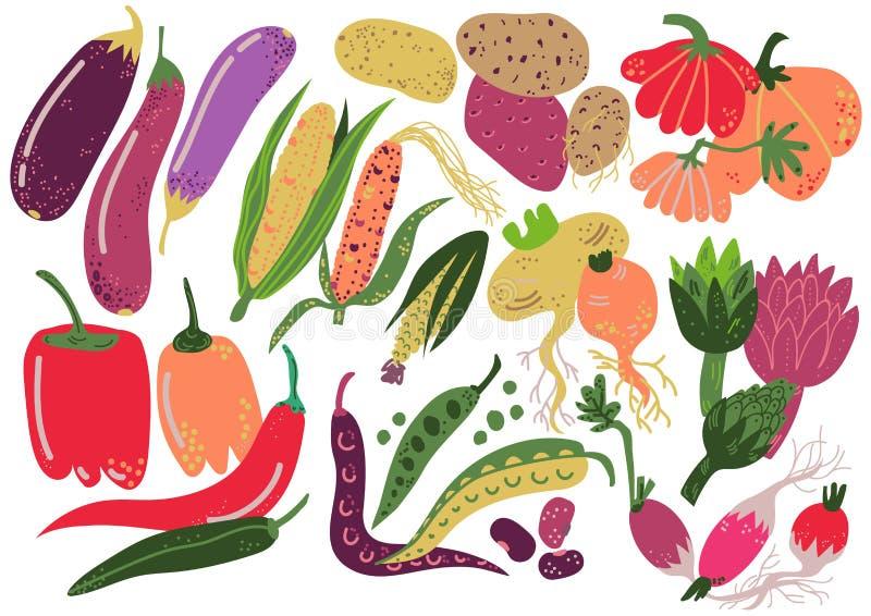 Las verduras fijaron, comida sana de la nutrición, zanahoria, patata, pimienta, rábano, berenjena, maíz, calabaza, vector de la a ilustración del vector