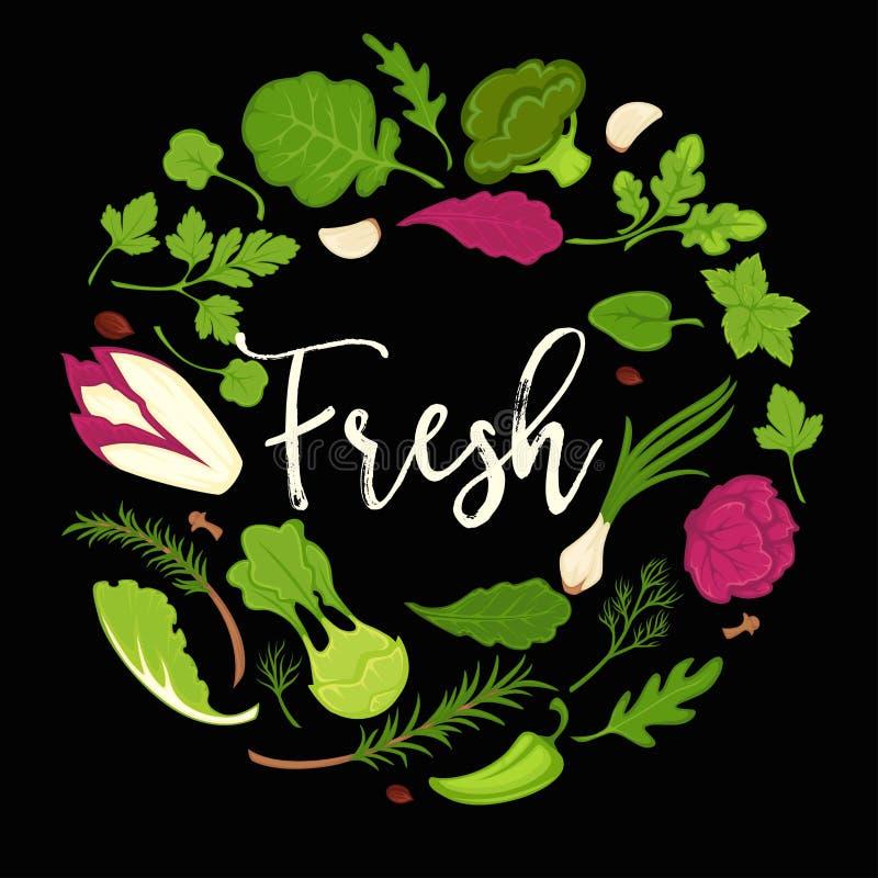 Las verduras frondosas frescas de las ensaladas de la lechuga vector el cartel del vegetariano de la dieta sana ilustración del vector