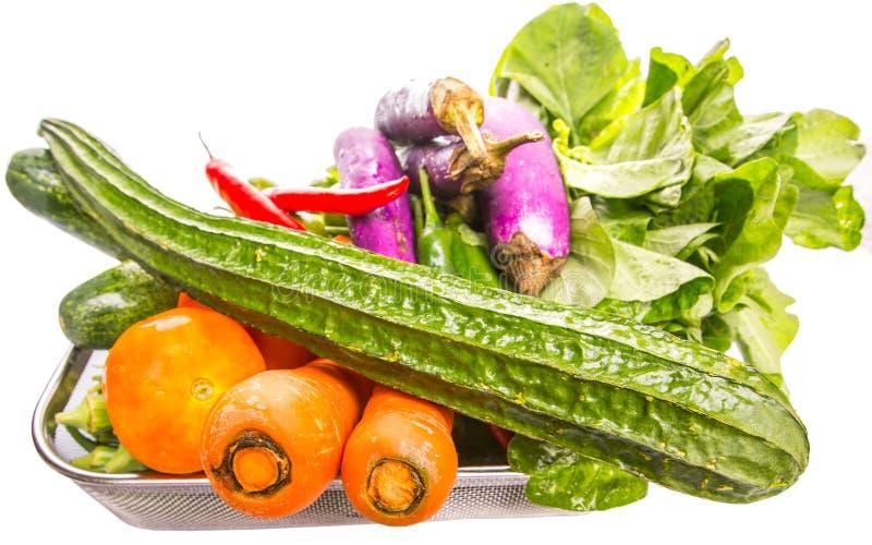 Las verduras tropicales de la mezcla aislaron IX imágenes de archivo libres de regalías