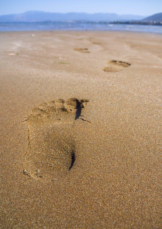 Las vistas panorámicas de la playa arenosa, de las montañas y de las huellas en la arena durante la bajamar en las municiones de  foto de archivo libre de regalías