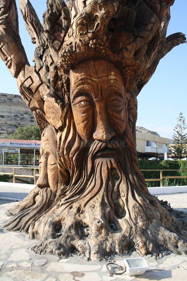 Las w Matala Drzewo Grecja fotografia stock