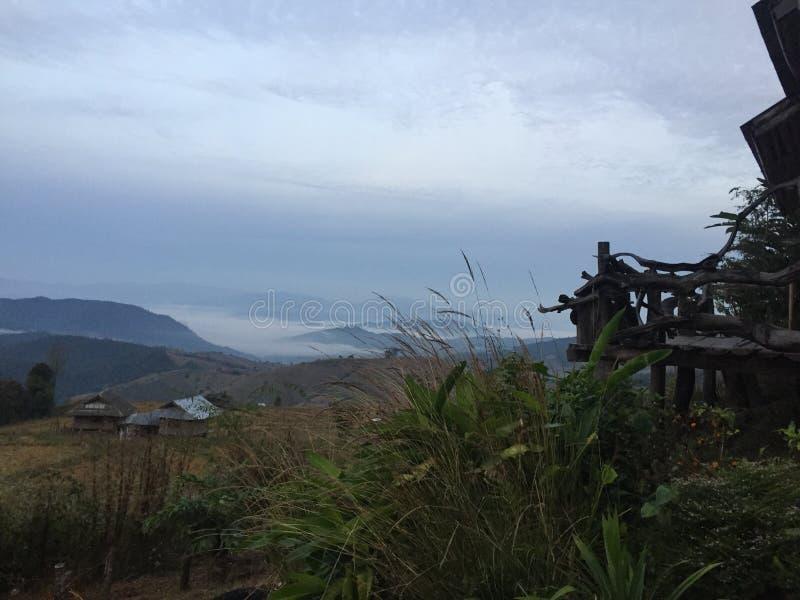 Las w północnym Thailand nuture zieleni @ zmierzchu zdjęcia royalty free