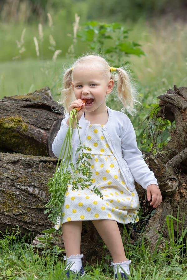 Las zanahorias de las cosechas de la niña fotografía de archivo libre de regalías