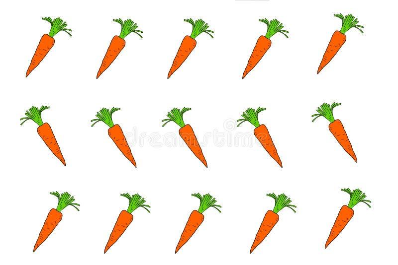 Las zanahorias son una verdura de raíz libre illustration