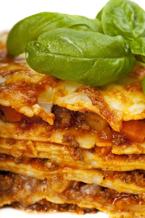 Lasagna royalty free stock photo