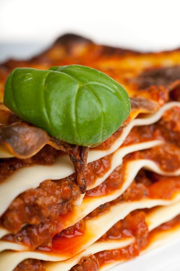lasagna zdjęcie royalty free