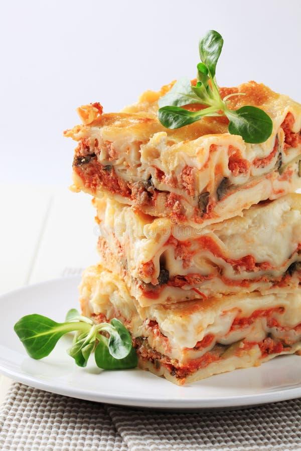 lasagna royaltyfri foto