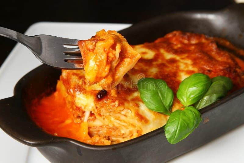 Lasagna bolognese immagine stock