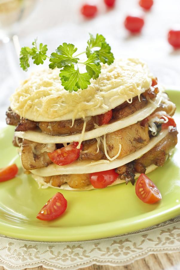 Download Lasagna With Fish And Mushrooms Royalty Free Stock Photography - Image: 18017087
