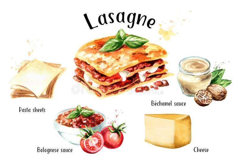 Lasagne recipe set. Watercolor hand drawn illustration isolated on white background. Lasagne recipe set. Watercolor hand drawn illustration isolated on white vector illustration
