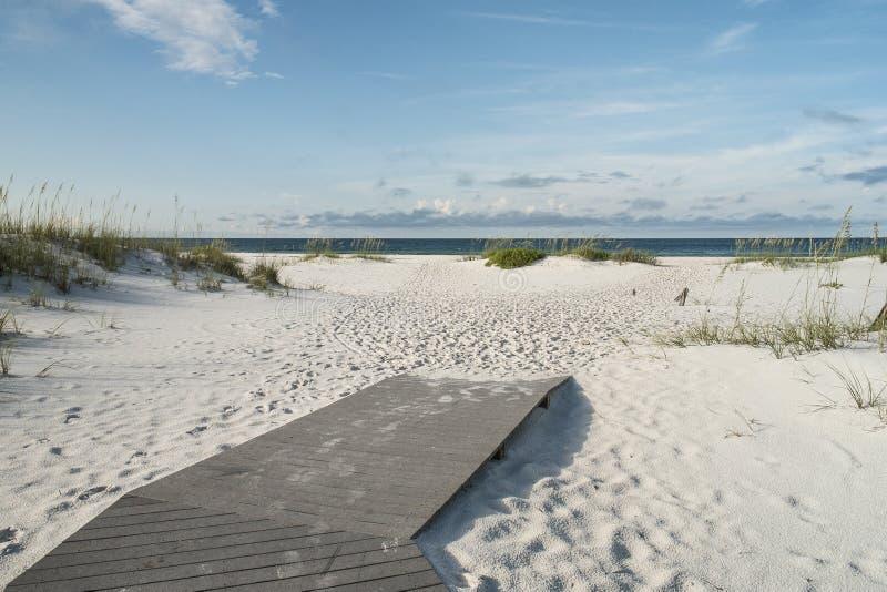 Lasci la vacanza della spiaggia cominciare fotografia stock libera da diritti