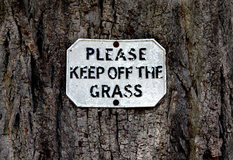 Lasci stareare prego l'erba fotografia stock