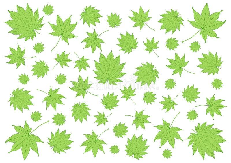 Lascia il modello verde fresche e molte foglie foglie fresche royalty illustrazione gratis