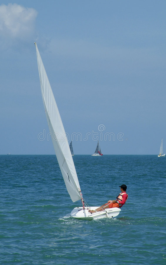 Free Laser Dinghy Sailing Stock Photo - 788820