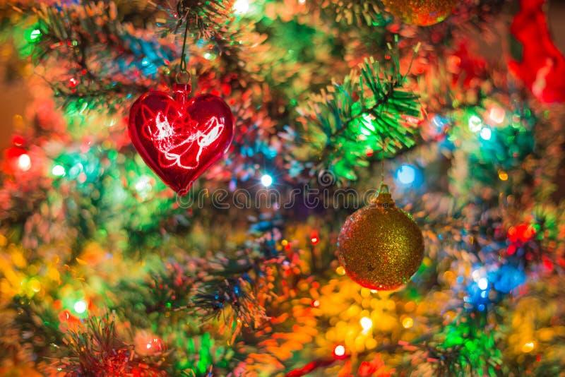 Laser-hjärtaljus på ett julträd royaltyfri foto