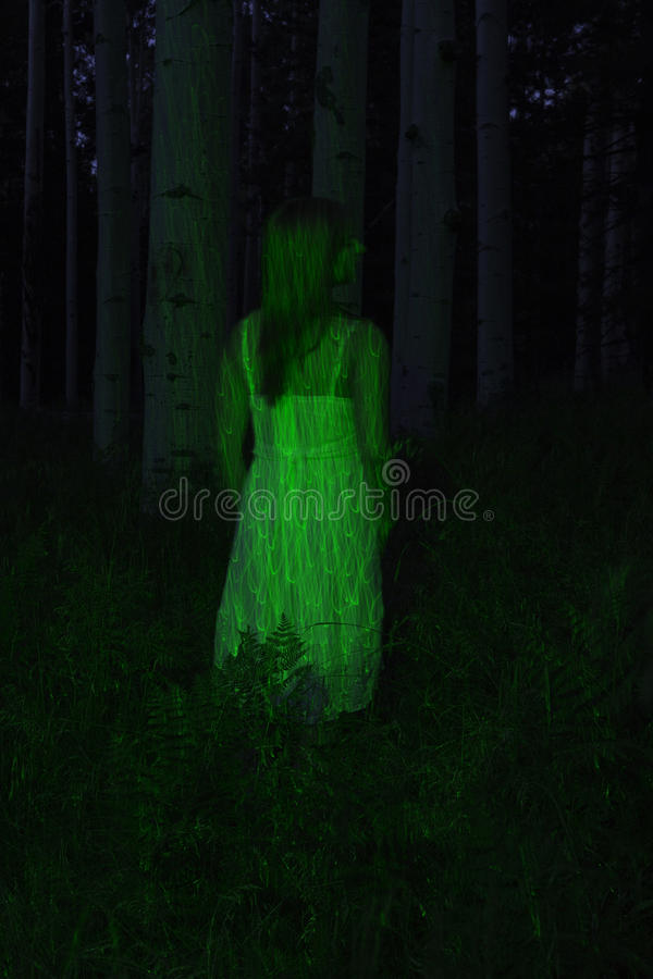 Laser lit female model. Female model standing in the wooda st night illuminated only by a green laser royalty free stock photography