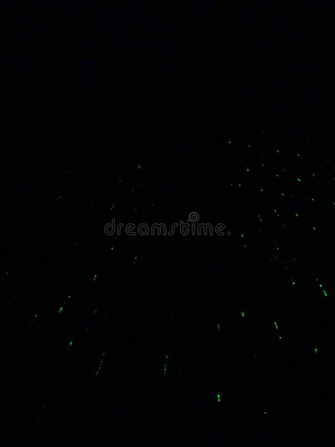 Laserstråle släppt in i den mörka himlen royaltyfria bilder