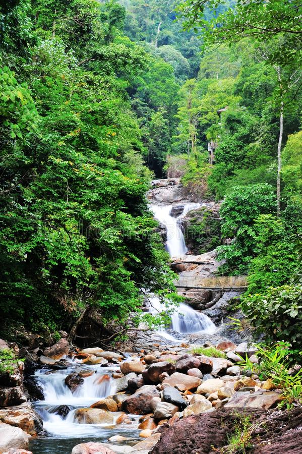 Lasir vattenfall arkivfoton