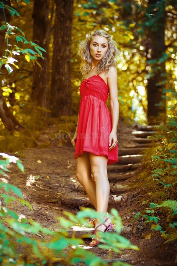 lasowa boginka obraz stock
