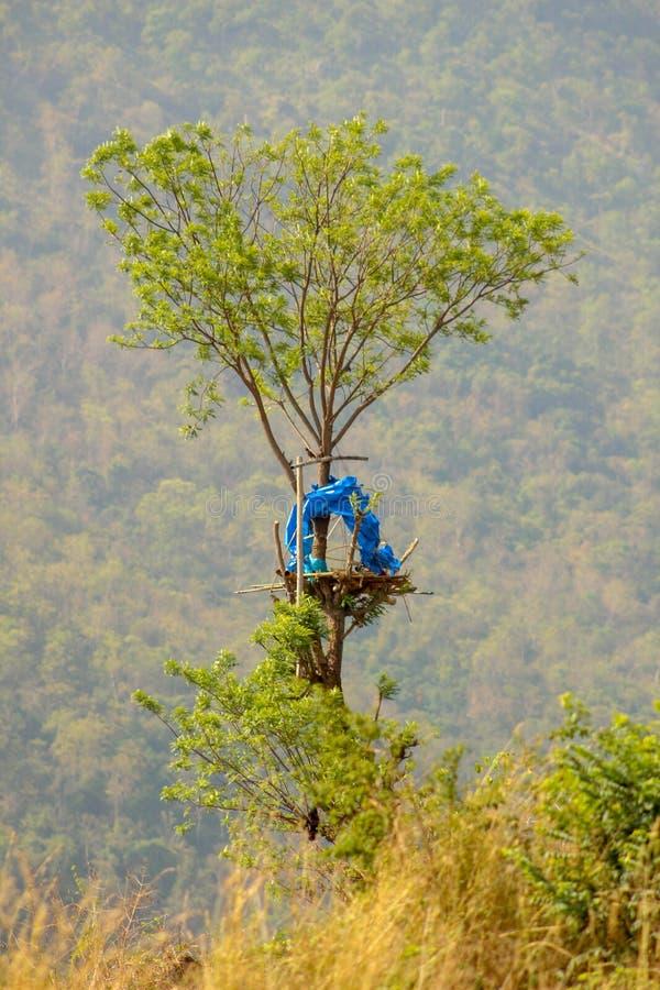 Lasowa buda zdjęcia stock