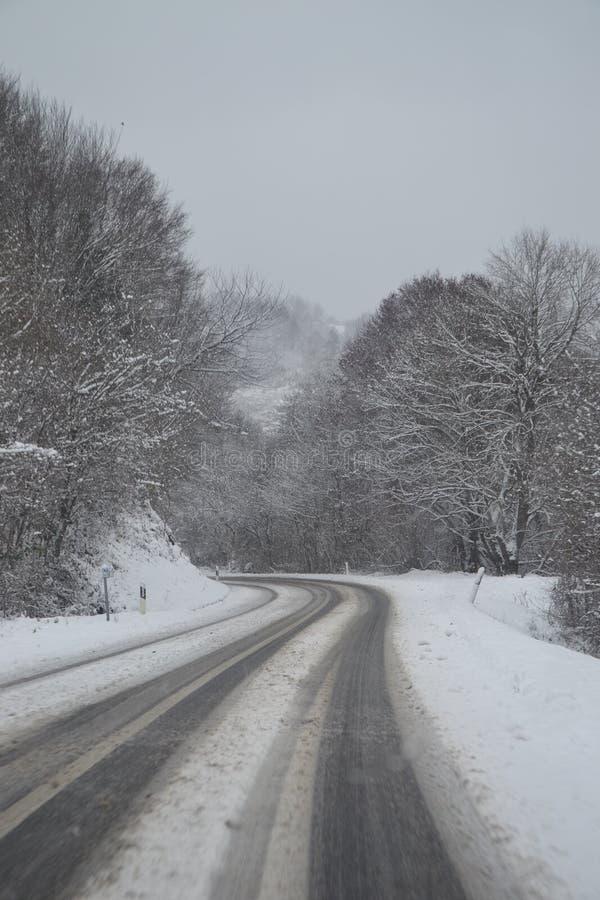 Lasowa droga w śniegu zdjęcia royalty free