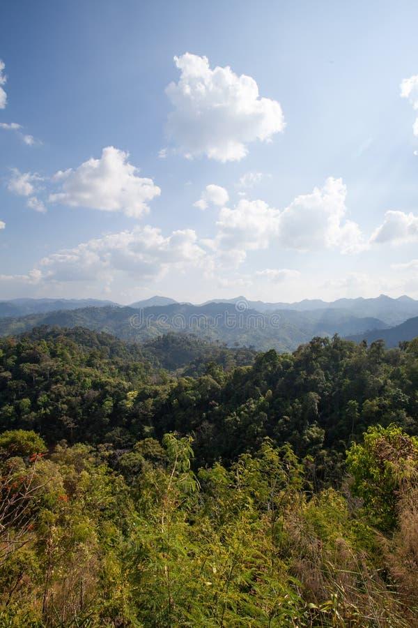 Lasowa góra i niebieskie niebo obrazy stock