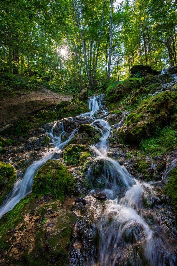 lasowa halna rzeka z siklaw? nad ska?ami obrazy stock