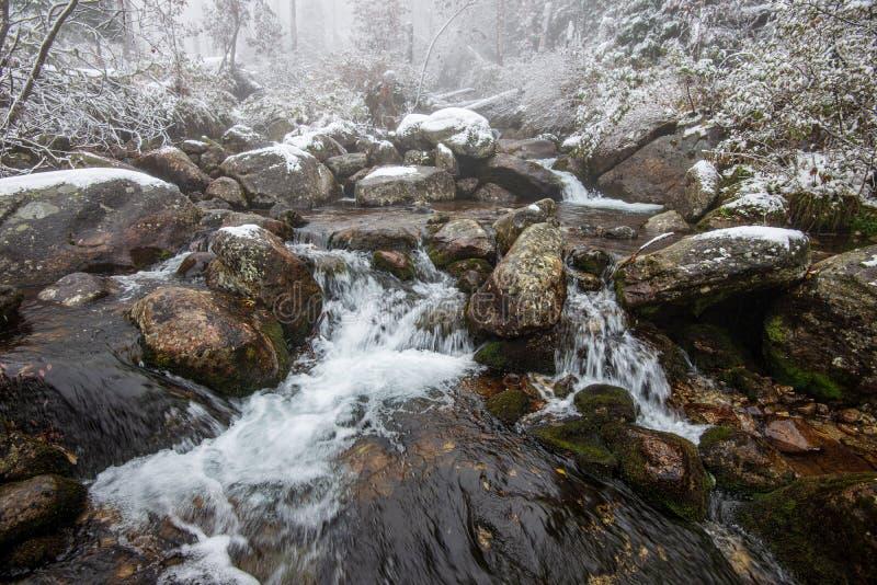 lasowa halna rzeka z siklaw? nad ska?ami zdjęcie stock