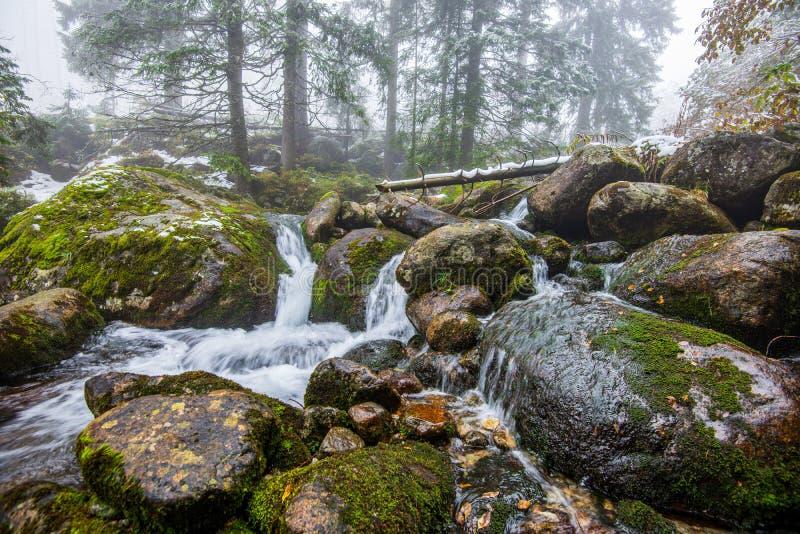 lasowa halna rzeka z siklaw? nad ska?ami obraz stock