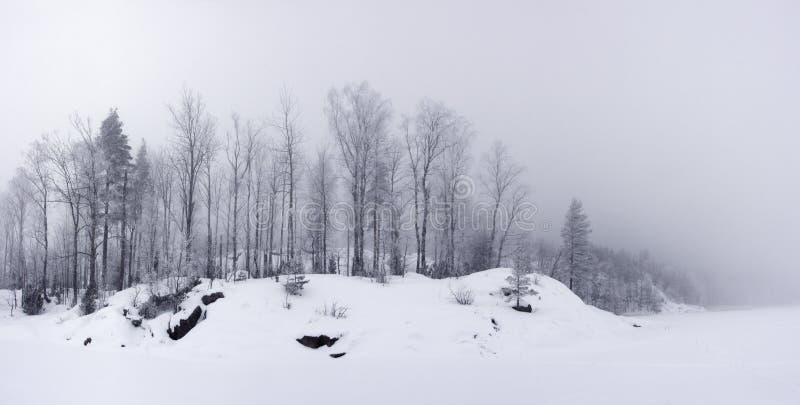 lasowa jeziorna panoramiczna brzeg widok zima obrazy royalty free
