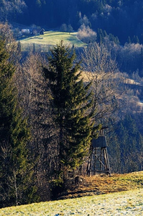 Lasowa krawędź z drewnianą polowanie kryjówką pod drzewem fotografia royalty free