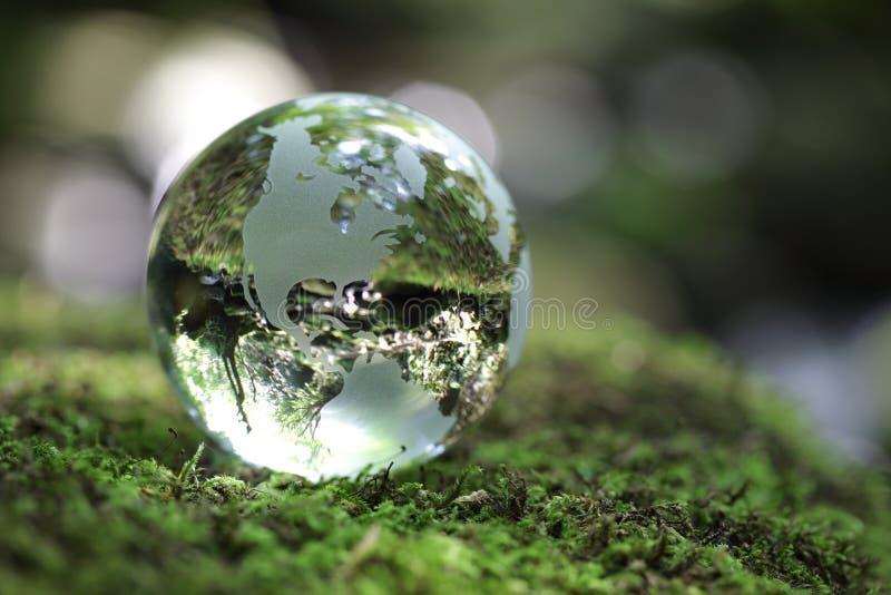 lasowa kula ziemska obrazy royalty free