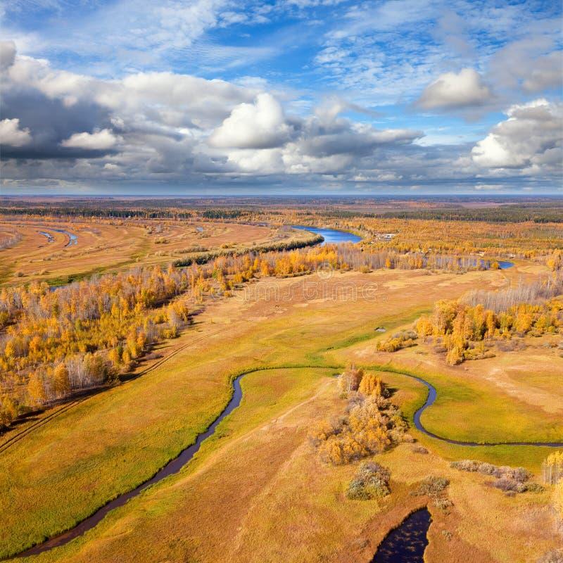 Lasowa rzeka w autmn zdjęcia stock