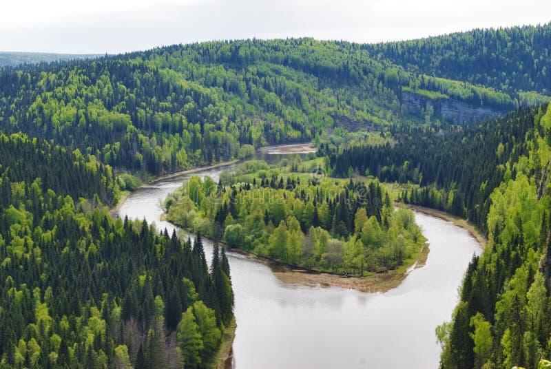 lasowa wyspa obrazy stock