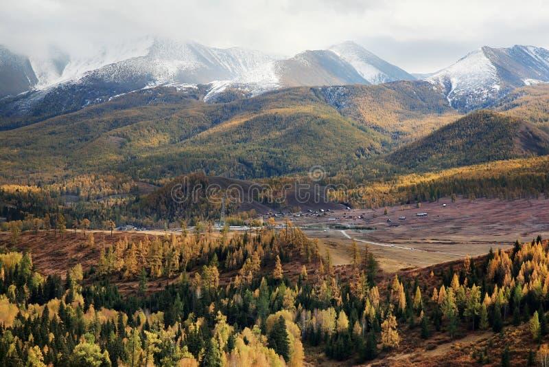 lasowe góry obrazy stock