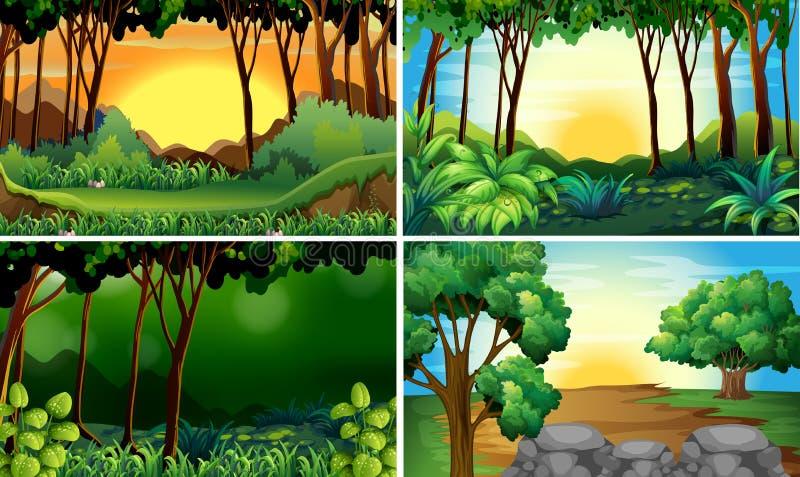 Lasowe sceny ilustracja wektor