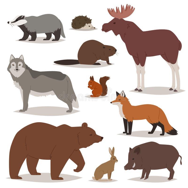 Lasowej zwierzę wektorowej kreskówki animalistyczni charaktery znoszą lisa, dzikiego wilk i knur w lasu ilustracyjnym ustawiający ilustracji