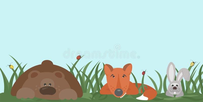 Lasowi mieszkanowie niedźwiedzie, lis, zając chuje w trawie, patrzeje wokoło z ciekawością ilustracja wektor