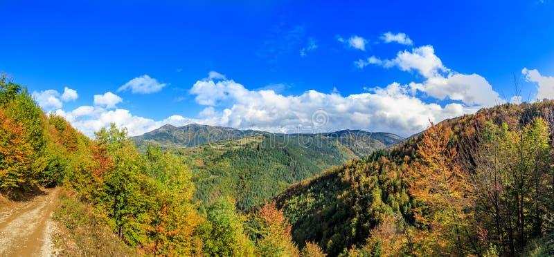 Lasowi wzgórza w jesieni obrazy stock