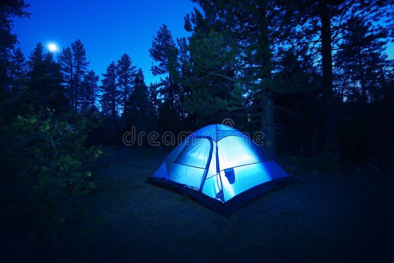 Lasowy camping - namiot obrazy royalty free