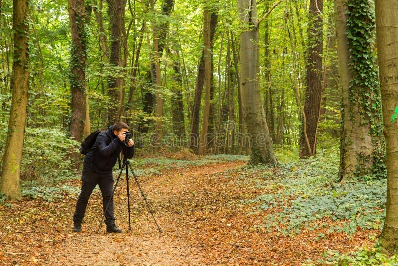 Lasowy fotograf fotografia stock