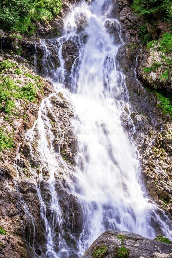 Lasowy halny rzeczny bieg nad skałami obraz stock